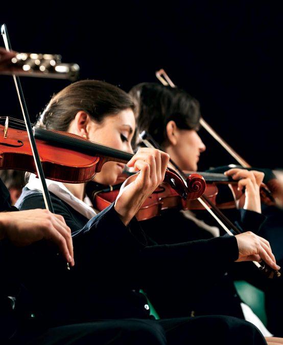 Música Bacharelado – cadastro