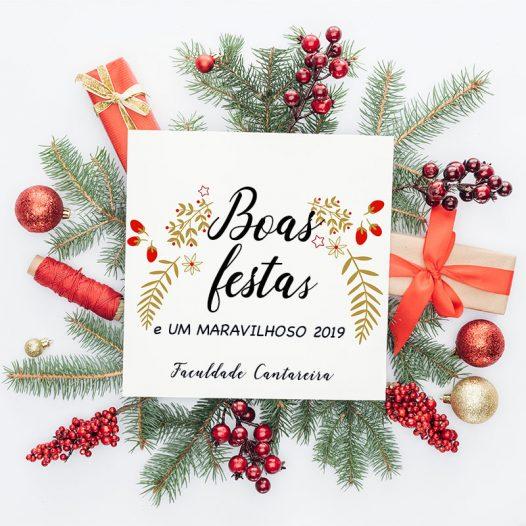 Boas Festas e Um Maravilhoso 2019